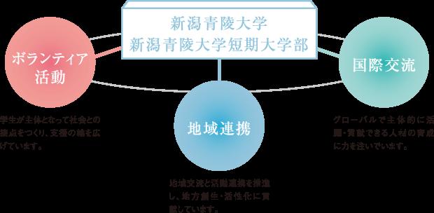 ボランティア活動、地域連携、国際交流の図解